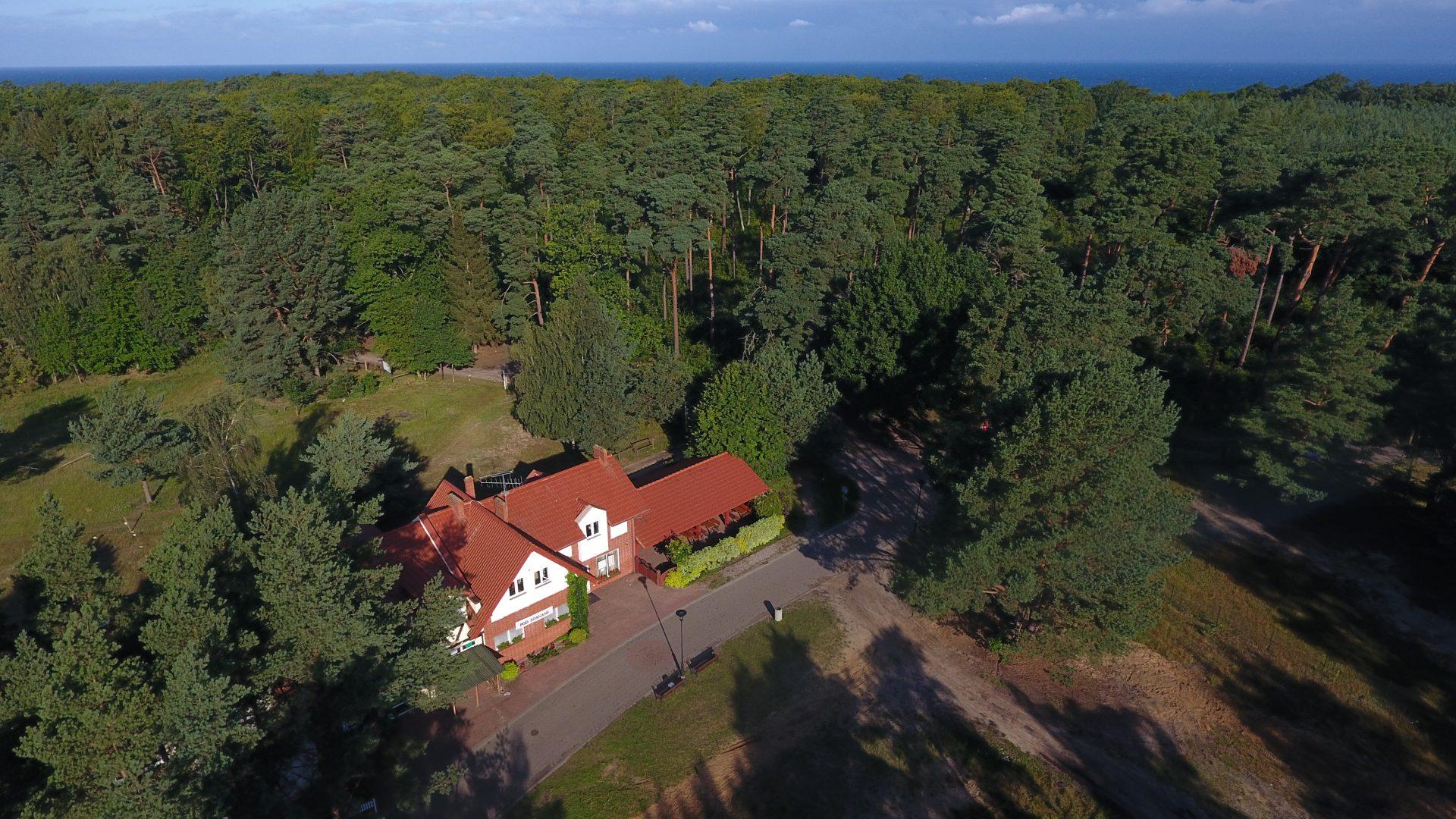 Zdjęcie z drona na las